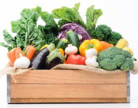 Las verduras temporada verano