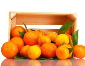 Beneficios de comprar naranjas online