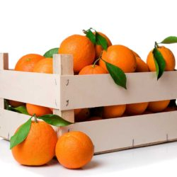 Naranjas para zumo - parejas - Fruteria de Valencia