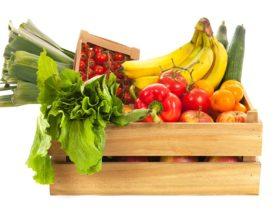 ¿Qué es comida ecologica?