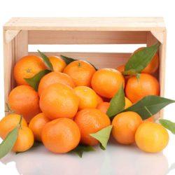 comprar mandarinas online - Fruteria de Valencia
