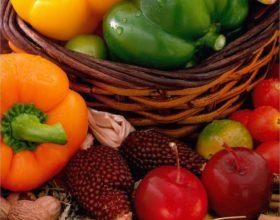Frutas y verduras de la huerta a casa
