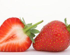 Las fresas dan la bienvenida a la primavera